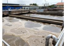 Xử lý triệt để cơ sở gây ô nhiễm môi trường nghiêm trọng